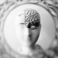 understanding the effects of addiction on the brain